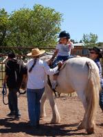 kid_horse